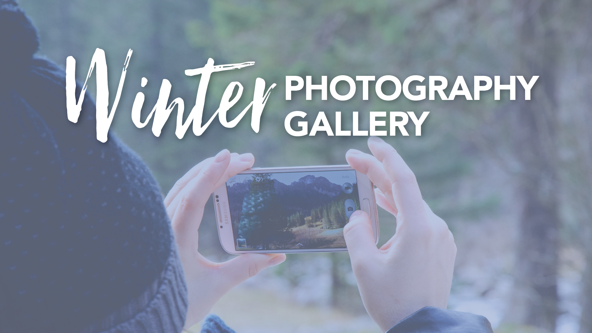 Winter Photography Gallery